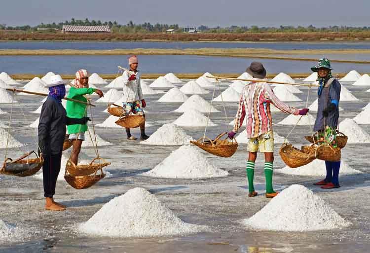 Are Seasoned Employees Worth Their Salt
